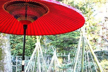 時雨亭 野点傘と冬支度