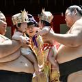 写真: 泣き相撲