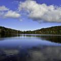 写真: 白駒の池