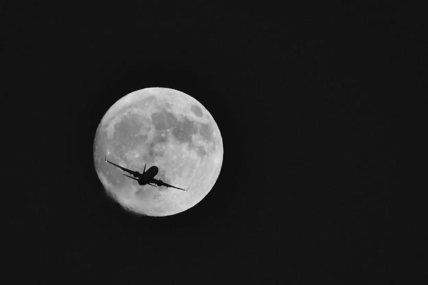 写真: 満月の日