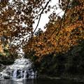 写真: 粟又の滝 (2)
