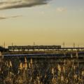 写真: 与田浦「鹿島線」