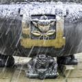 写真: 雪の本門寺