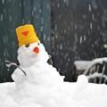 Photos: 初雪だるま