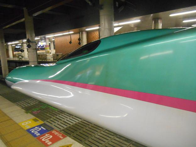 DSCN5401