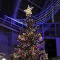 サッポロファクトリー アトリウム 「ジャンボクリスマスツリー」 (2)