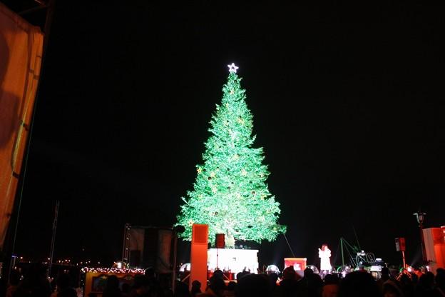 第20回 はこだてクリスマスファンタジー (3)