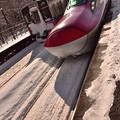 写真: 701系とこまち