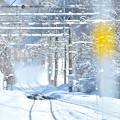 写真: 雪の山麓