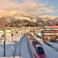 写真: 雪の仙岩峠3