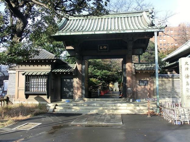 湯島聖堂 仰高門 (2)