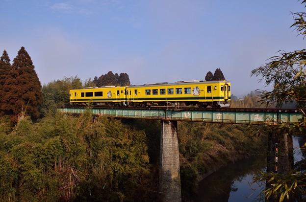 101Dムーミン列車