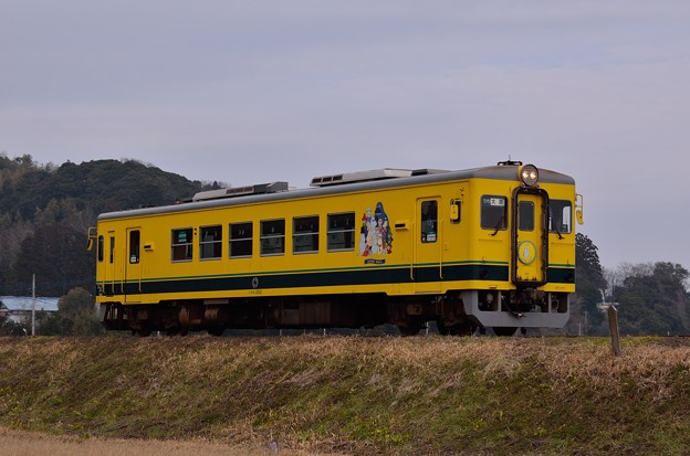 いすみ352大原行き56D