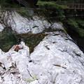 写真: Waterfalls and great rocks
