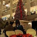 写真: R0032365 - もうクリスマス、だね♪