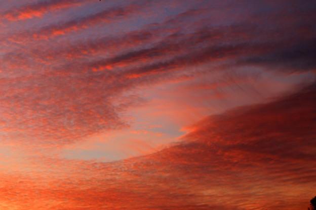写真: 天空への入り口