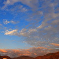 写真: 空を舞う