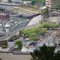 写真: ホテルからの眺望