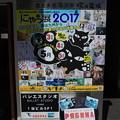 Photos: 『にゃっ展』