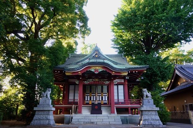 柴又八幡神社