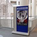 愛知県美術館「長沢芦雪展」