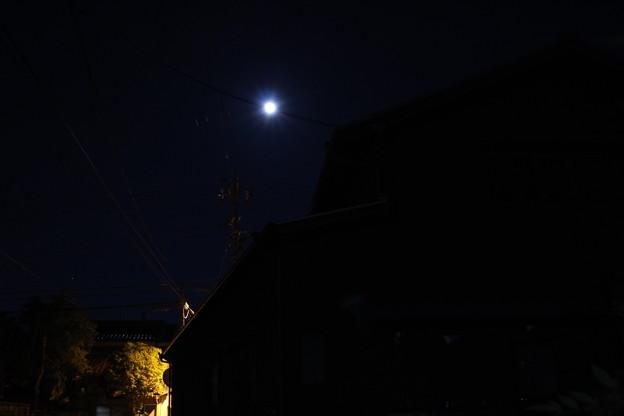 写真: IMG_0238