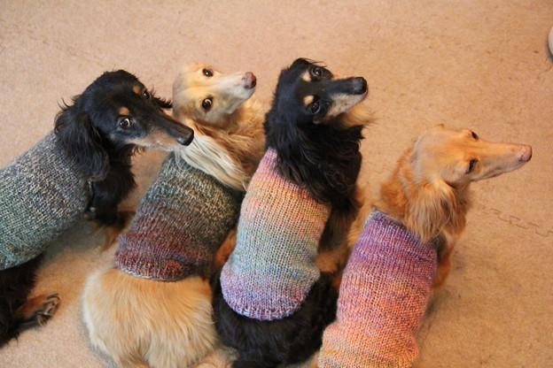 ママの手編みだよ