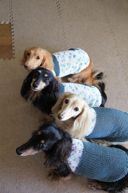 ママの手編み似合ってるかな?