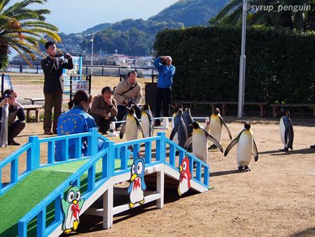 20141206 長崎 キングパレード20
