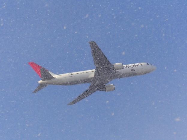 Photos: 雪やこんこ