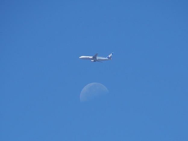 Photos: Blue Moon