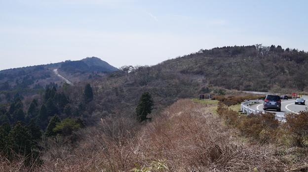 写真: DSC02048箱根ターンパイク桜