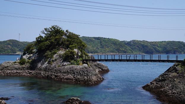 写真: DSC02252 伊豆下田 下田海中水族館