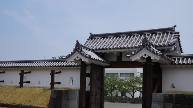 DSC02430小田原城址公園