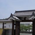 写真: DSC02430小田原城址公園