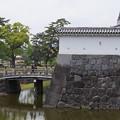 写真: DSC02431小田原城址公園