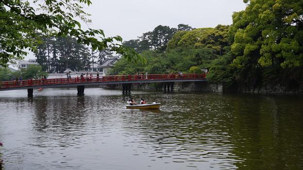 写真: DSC02500小田原城址公園