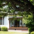 写真: DSC02673たてもの園(小出邸)