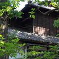 写真: DSC02798たてもの園(高橋是清邸)