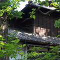 DSC02798たてもの園(高橋是清邸)