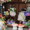 DSC03169掛川花鳥園