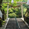 写真: 伊香保神社30