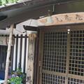 写真: 伊香保神社奥37