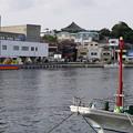 写真: 大人の遠足・三浦三崎3911