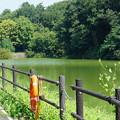 国営武蔵丘陵森林公園4