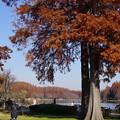 DSC05859水元公園