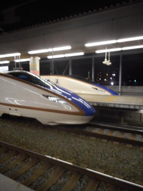 E7系F編成/W7系W編成(12両編成)-0