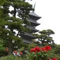 写真: 真ん中塔
