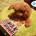 Photos: ピースと・・・1