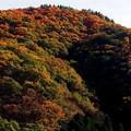 Photos: 秋の水上